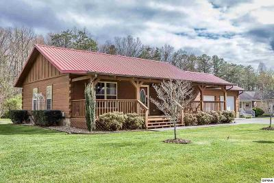 Sevierville Single Family Home For Sale: 3508 Autumn Woods Ln