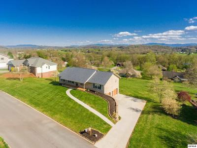 Sevierville Single Family Home For Sale: 2718 Madison Ridge