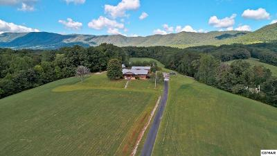 Cocke County Single Family Home For Sale: 33.17 Acres 1537-1539 Hwy 321