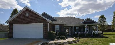 Seymour Single Family Home For Sale: 112 Cumberland Gap