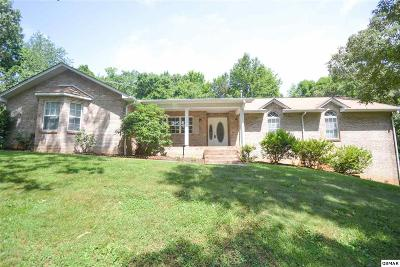 Single Family Home For Sale: 2911 E Antioch Church Rd