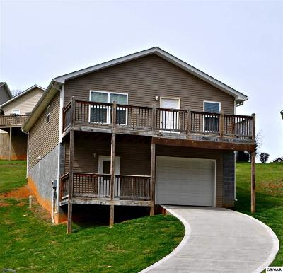 Sevierville Single Family Home For Sale: 1536 Patricia Holt