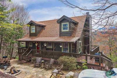 Sevierville Single Family Home For Sale: 2415 N School House Gap
