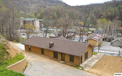 Gatlinburg Single Family Home For Sale: 133 Water Tower Road