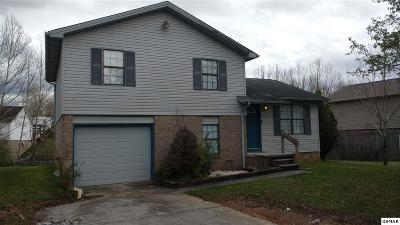 Sevierville Single Family Home For Sale: 1805 Norlil