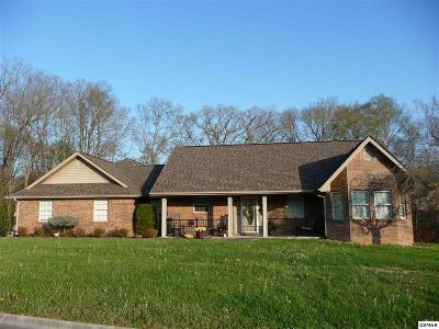 Sevierville Single Family Home For Sale: 634 Riverbrook Dr