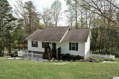 Sevierville Single Family Home For Sale: 2304 Island Blvd