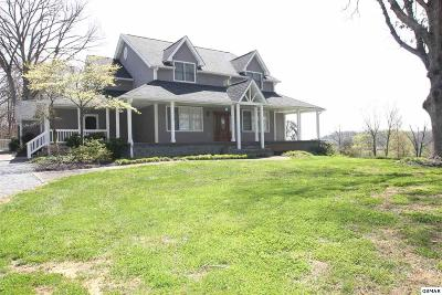 Sevier County Single Family Home For Sale: 3345 Hayes Lane