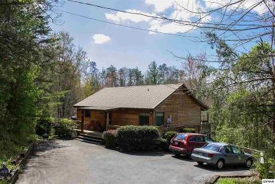 Sevierville Single Family Home For Sale: 1906 Regans Ridge Way