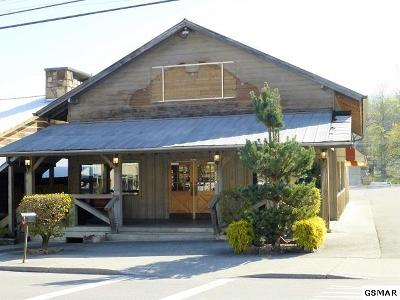 Gatlinburg TN Commercial For Sale: $42,000