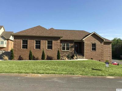 Sevierville Single Family Home For Sale: 1738 Sierra Ln
