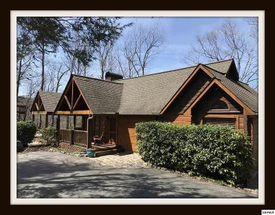 Sevierville Single Family Home For Sale: 3680 Edge Park Dr