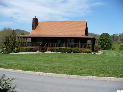 Sevierville Single Family Home For Sale: 3509 Autumn Woods Lane