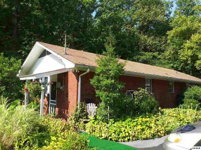 Gatlinburg Single Family Home For Sale: 1410/1414 E Parkway