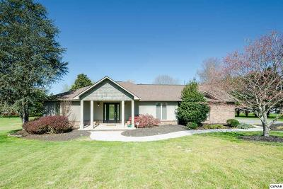 Sevierville Single Family Home For Sale: 2509 Lees Path