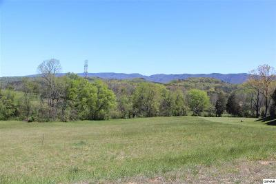 Blount County Residential Lots & Land For Sale: 1574 Mint Meadows Dr