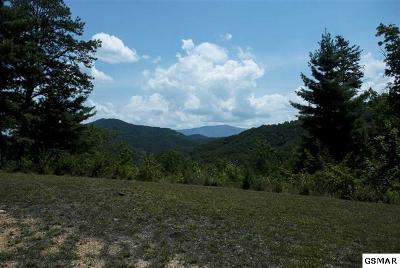 Sevier County Residential Lots & Land For Sale: 410 Hawken Drive