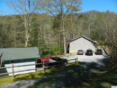 Sevierville Single Family Home For Sale: 959 Obes Branch Rd