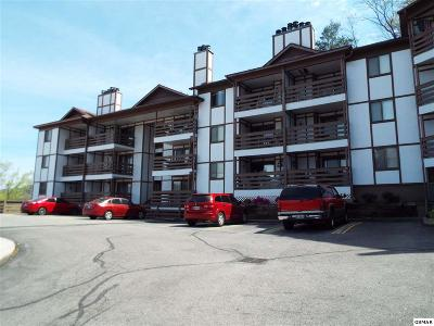 Sevier County Condo/Townhouse For Sale: 616 Turkey Nest Road