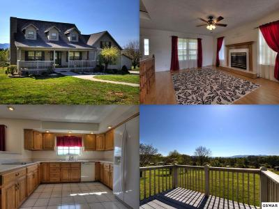 Maryville Single Family Home For Sale: 4668 W McCammon Court