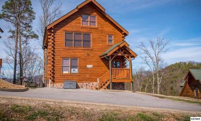 Sevierville Single Family Home For Sale: 2853 White Oak Ridge Lane