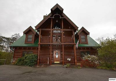 Pigeon Forge Single Family Home For Sale: 3308 Kestrel
