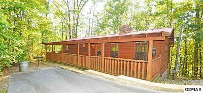 Sevier County Single Family Home For Sale: 1524 Ski View Ln