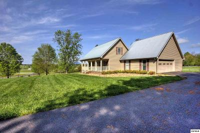 Sevierville Single Family Home For Sale: 2135 Maples Branch Road