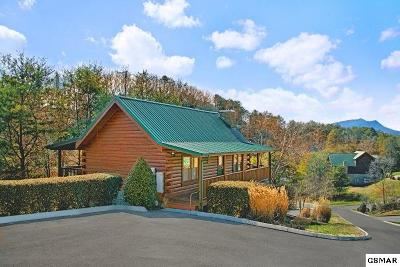 Sevierville Single Family Home For Sale: 1624 Little Cabin Loop
