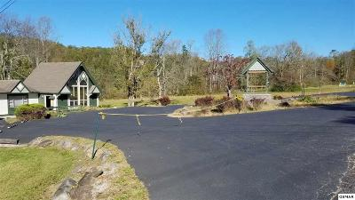 Gatlinburg Commercial For Sale: 3629 E Parkway