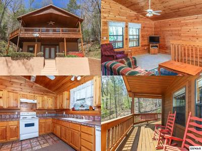 Sevierville Single Family Home For Sale: 3535 Birds Creek Road