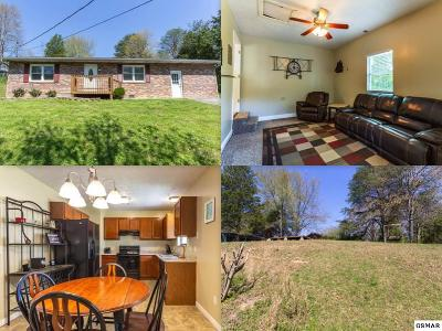 Sevierville Single Family Home For Sale: 615 Kingfisher Avenue