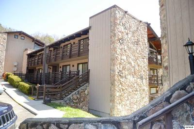Sevierville Condo/Townhouse For Sale: 1081 Cove Road