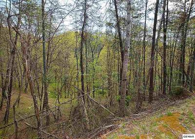 Residential Lots & Land For Sale: Lot 131 Silver Poplar Ln