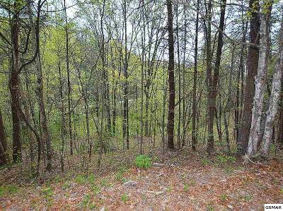 Residential Lots & Land For Sale: Lot 132 Silver Poplar Ln