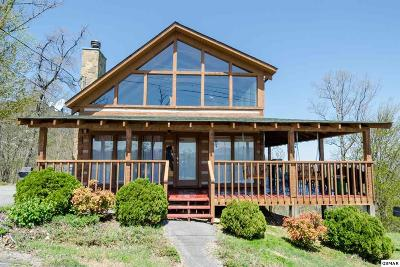 Sevierville Single Family Home For Sale: 2238 Windswept View Way