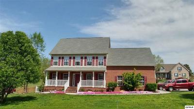 Seymour Single Family Home For Sale: 905 Long John Trce