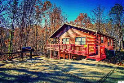 Sevierville Single Family Home For Sale: 1542 Timbertop Way