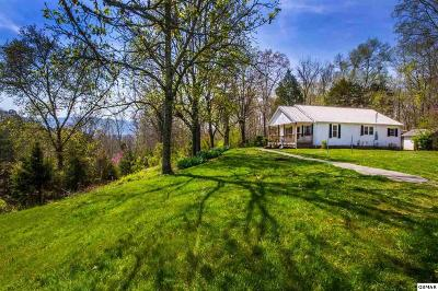 Sevier County Single Family Home For Sale: 410 Fain Road