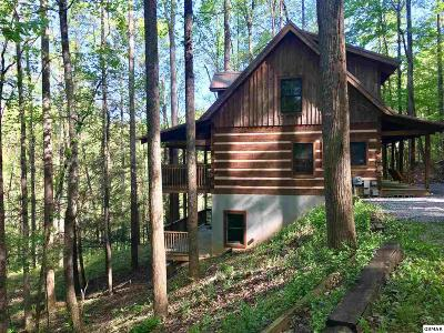 Gatlinburg Single Family Home For Sale: 4140 Manis Hollow