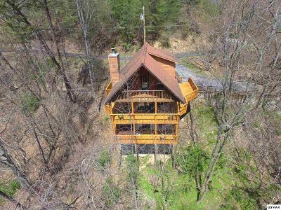 Gatlinburg Single Family Home For Sale: 1136 Laddie Buck Ln