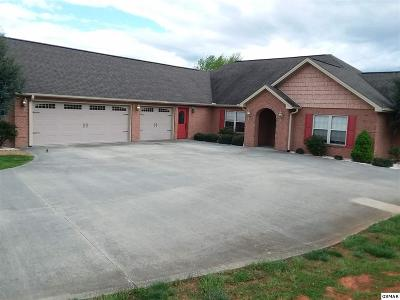 Dandridge Single Family Home For Sale: 1036 Southwind Cir
