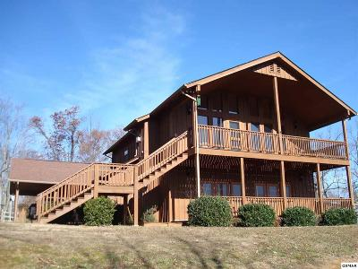 Sevierville Single Family Home For Sale: 2950 Mockingbird Way