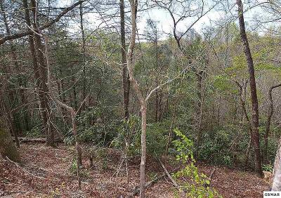 Residential Lots & Land For Sale: Lots 5,6,7 Shielview Est