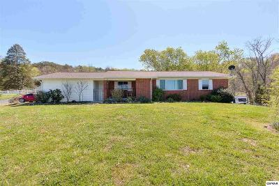 Rutledge Single Family Home For Sale: 951 Highway 92