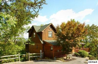 Sevierville Single Family Home For Sale: 2010 Destiny Way