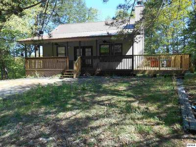 Pigeon Forge Single Family Home For Sale: 647 Oaks View