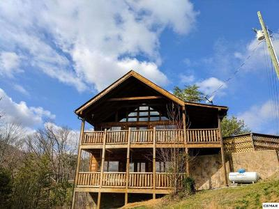 Sevierville Single Family Home For Sale: 1713 Bear View