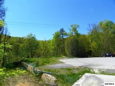 Gatlinburg Commercial For Sale: 746 Ski Mountain Road