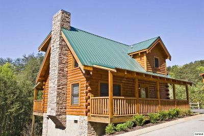 Pigeon Forge Single Family Home For Sale: 3406 Merlin